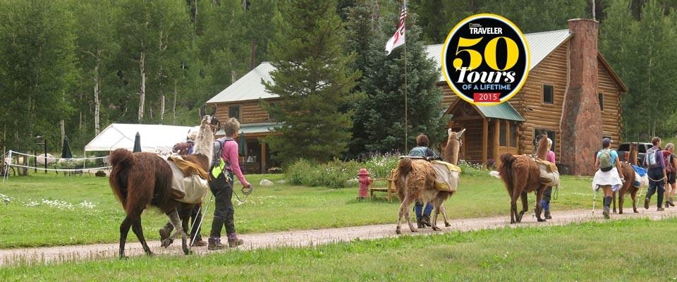 Vail to Aspen Llama Trek