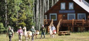 Summer Hut Trips