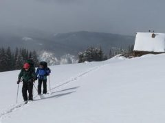 Colorado Hut Trips – Private Trips