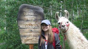 take a llama to lunch, llama hikes, llama trekking, vail, colorado, llama lunch