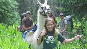 llama trekking hut trips vail colorado, llama lunch