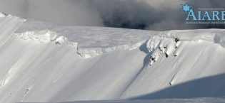 Avalanche Courses