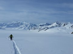 10-Days in AK: A Ski Adventure in the Eastern Alaska Range